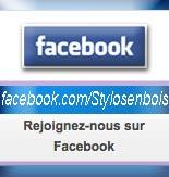 page Facebook de Stylos-en-bois.fr